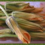 Salvia e fiori di zucca in pastella