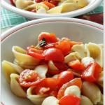 Conchiglie con pomodori freschi e secchi, basilico e mozzarella