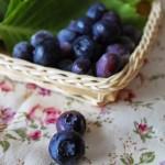 In cucina con il tè: Agosto, passeggiando nel bosco – I mirtilli –