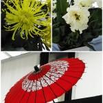 "Kikkoman e la Cultura culinaria Giapponese, la cucina ""Washoku"""