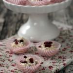 Croccantini di quinoa soffiata, cioccolato e cranberries