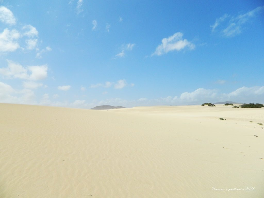 Dune di Corralejo 2 - Fuerteventura 2016