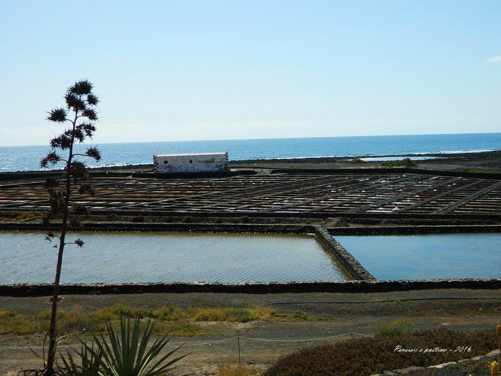 Le saline - Fuerteventura 2016