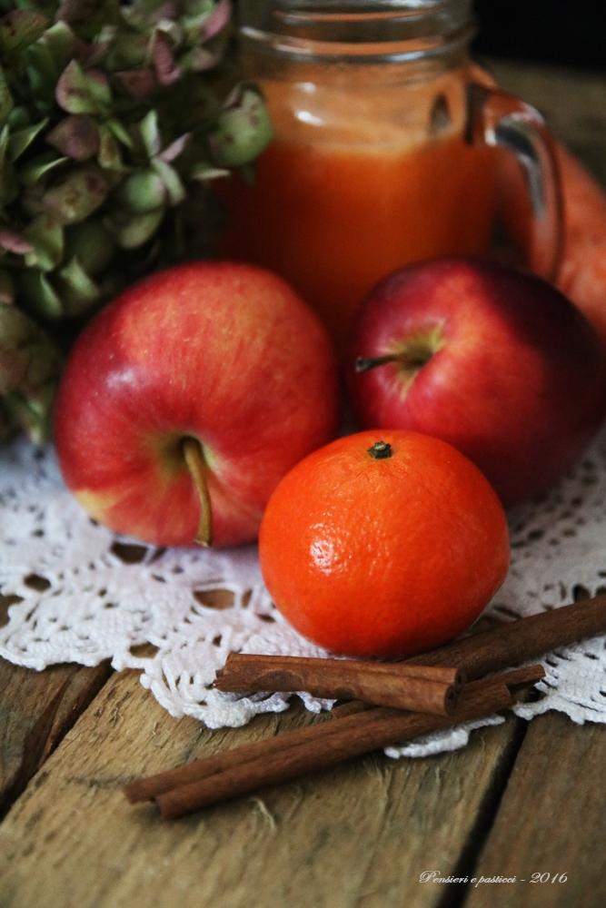 centrifugato-alla-clementina-carota-mela-e-cannella-0829