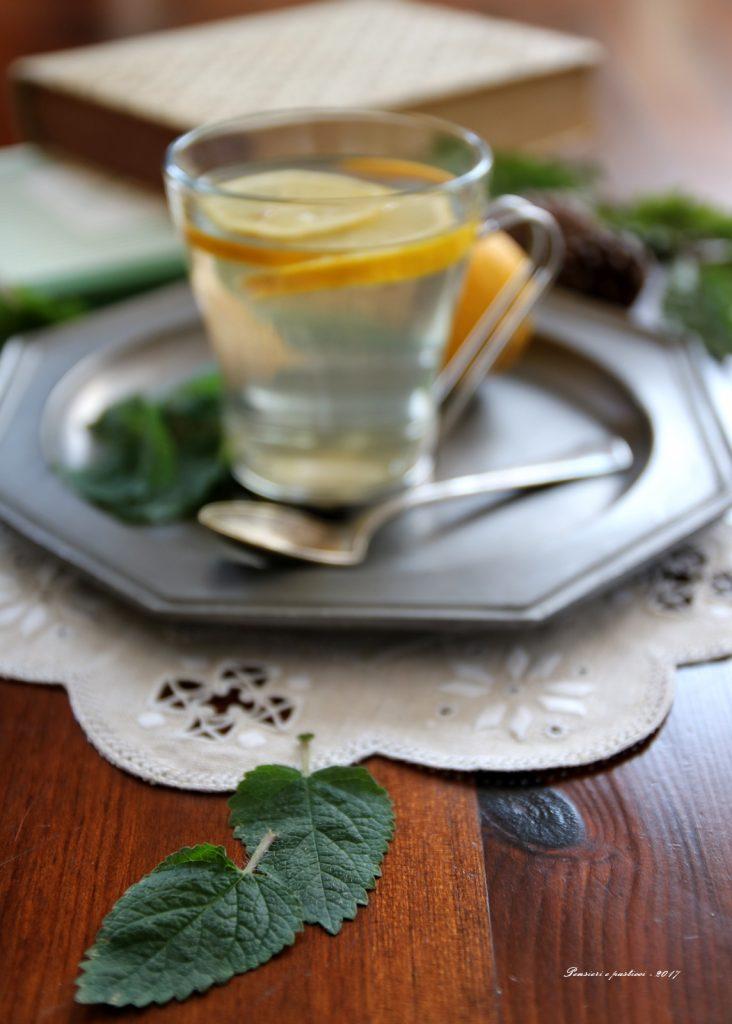 tisana melissa e limone
